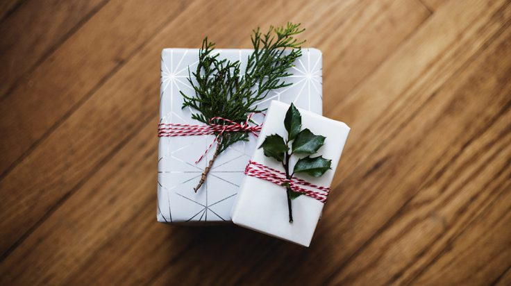 Calzoncillos de ZD de regalo de navidad