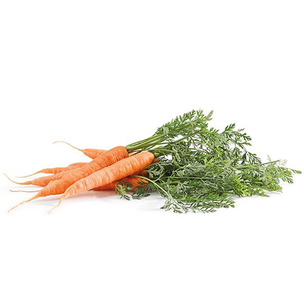 receta tarta de zanahoria ingredientes Zanahorias
