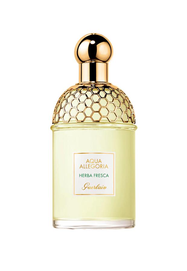 perfumes verano 2020 Eau de Cologne Aqua Allegoria Herba Fresca Guerlain