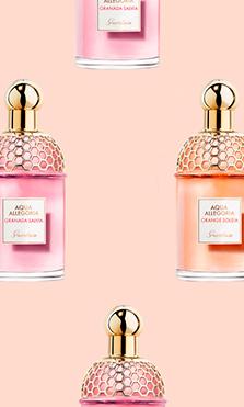 El secreto detrás de los perfumes de Aqua Allegoria