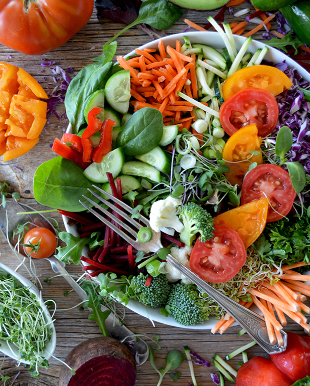 tripa plana alimentos verduras