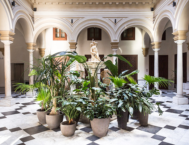 Yoga&Beauty Retreat en Palacio Villapanés