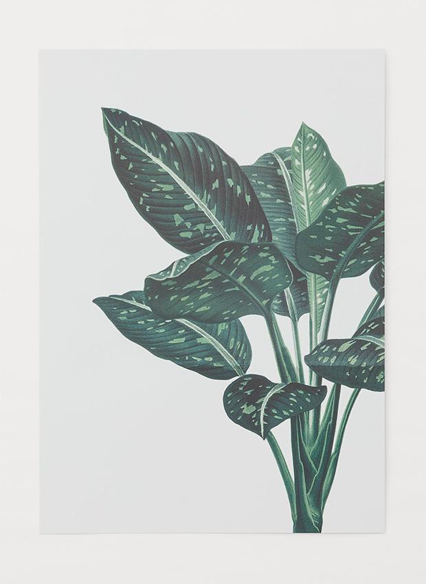 Lámina de hojas de las novedades H&M Home