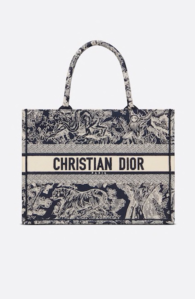 bolsos más buscados Book tote pequeño de Dior toile de jouy