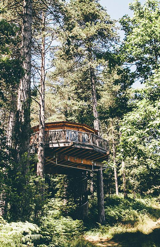 cabana-del-arbol-entrada