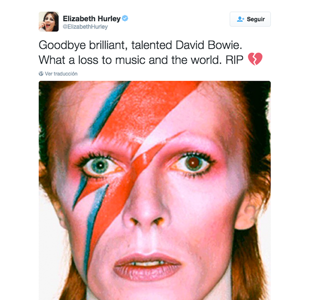 Elisabeth Hurley se despide en su Twitter oficial