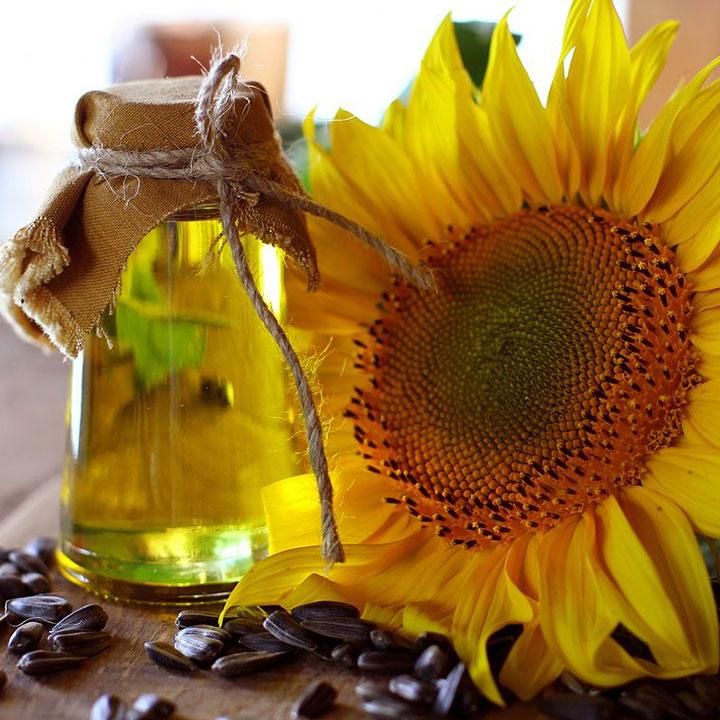 Aceite de girasol: alimentos caída cabello