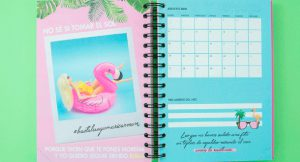 Las agendas ilustradas para organizarte