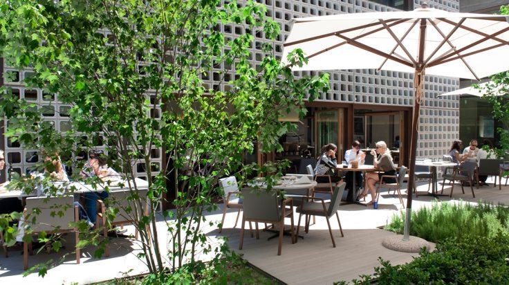 bares y restaurantes con terraza en Madrid. Biosoc de Lobos