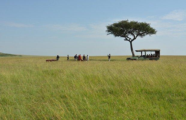 elefant agencia de viajes