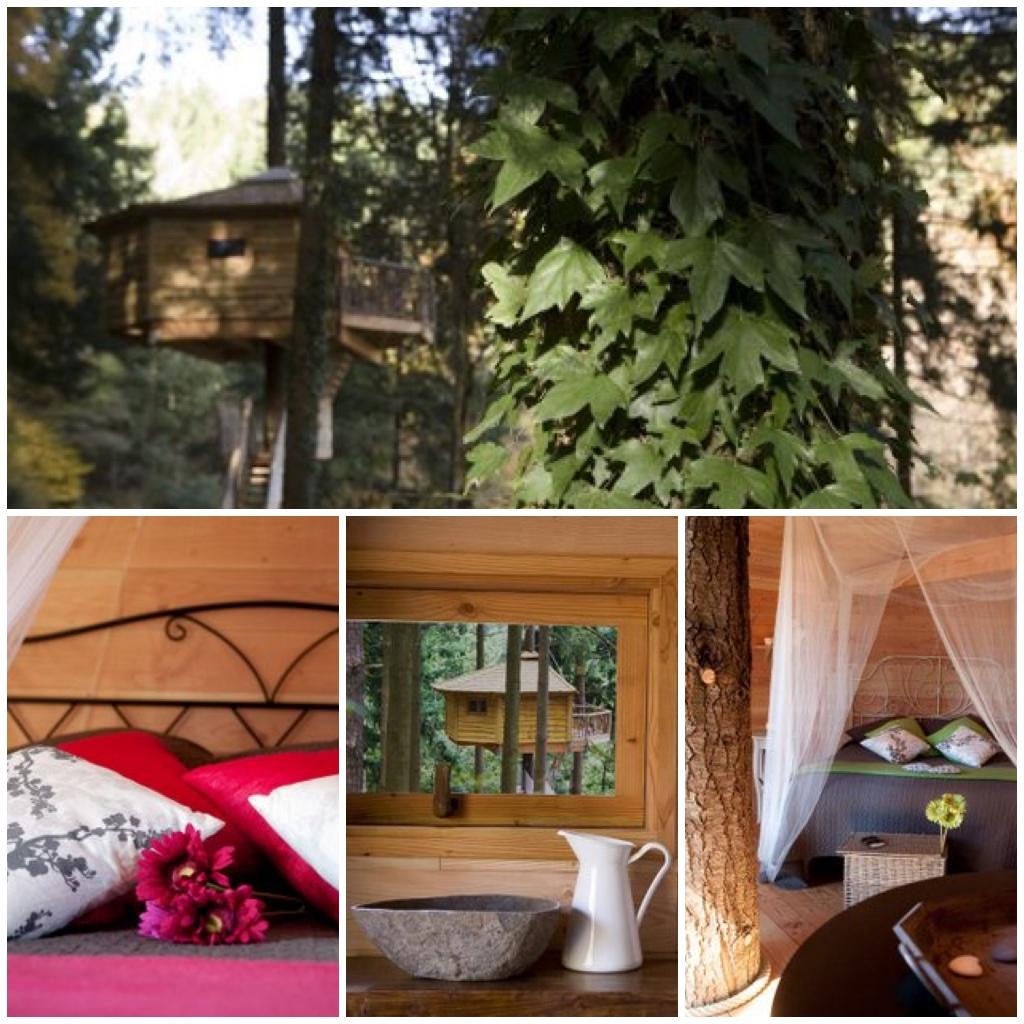 Dormir en los arboles hoteles para ni os en catalu a - Hoteles cabanas en los arboles ...