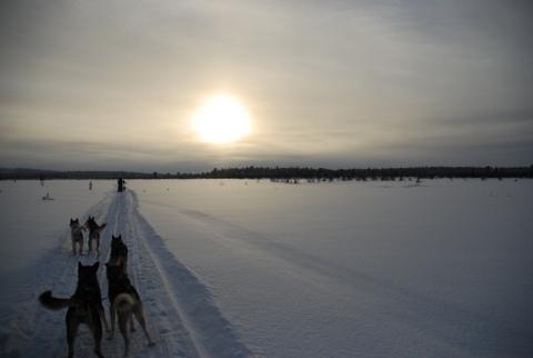 Viaje a Laponia con niños-2996-joanasaldon
