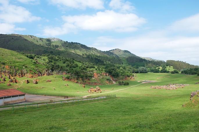 Parques temáticos de la naturaleza: Cabárceno-5334-joanasaldon