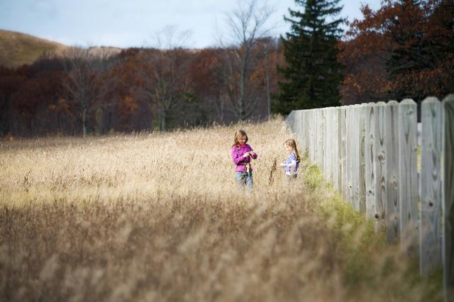 3 casas rurales perfectas para ir con los niños-13335-joanasaldon