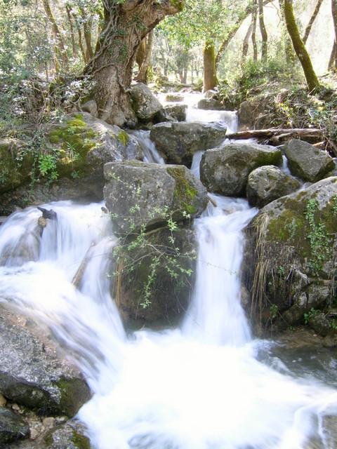 Escapadas con niños: Parque Natural de Cazorla, Segura y las Villas-6638-joanasaldon