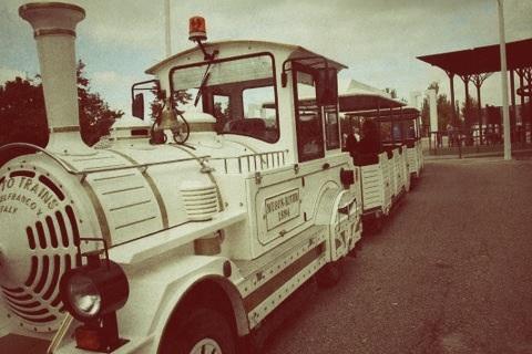 Planes con niños en Madrid: tren en el parque-6645-joanasaldon