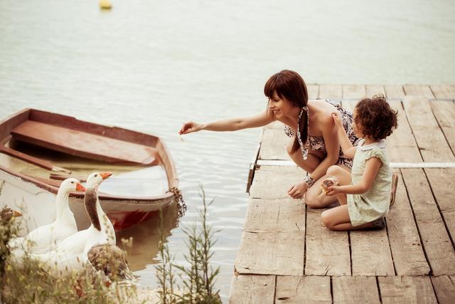 El balance del año de una madre...-7252-joanasaldon