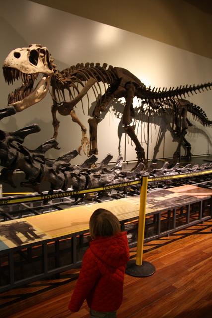 museos para niños ciencias naturales madrid