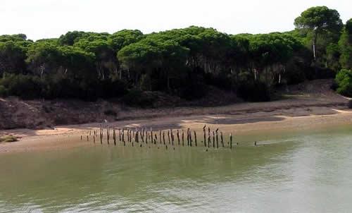 Camping Doñana: Vacaciones en Huelva con niños-8968-joanasaldon