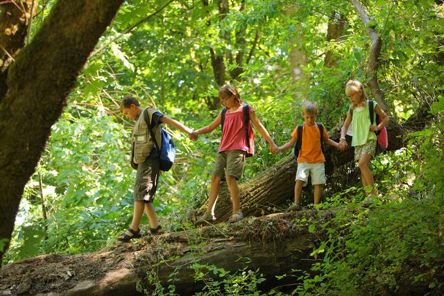 Campamentos de verano para niños-9964-joanasaldon