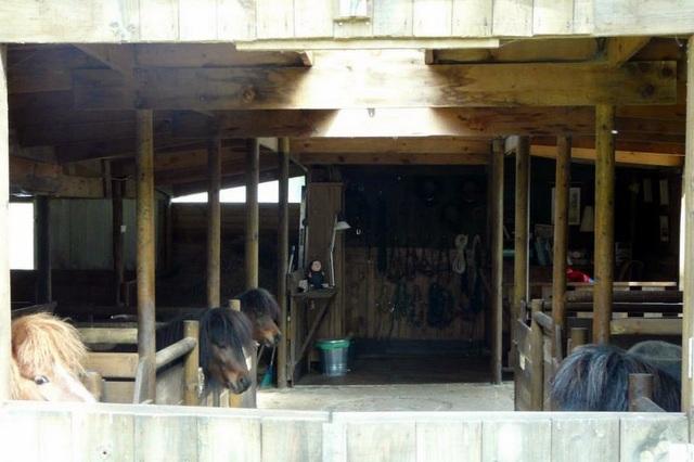 Cantabria con niños: Granja Armonia Animal-10651-joanasaldon