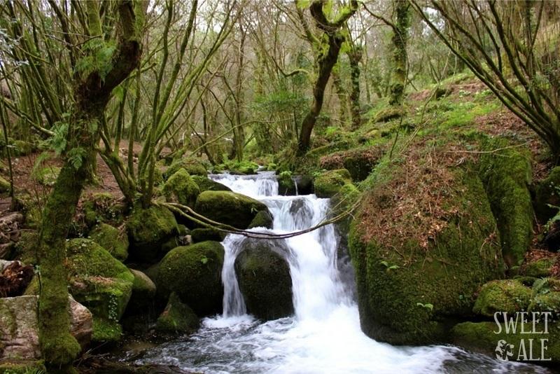 Plan con niños en Pontevedra: Ruta del agua-12251-joanasaldon