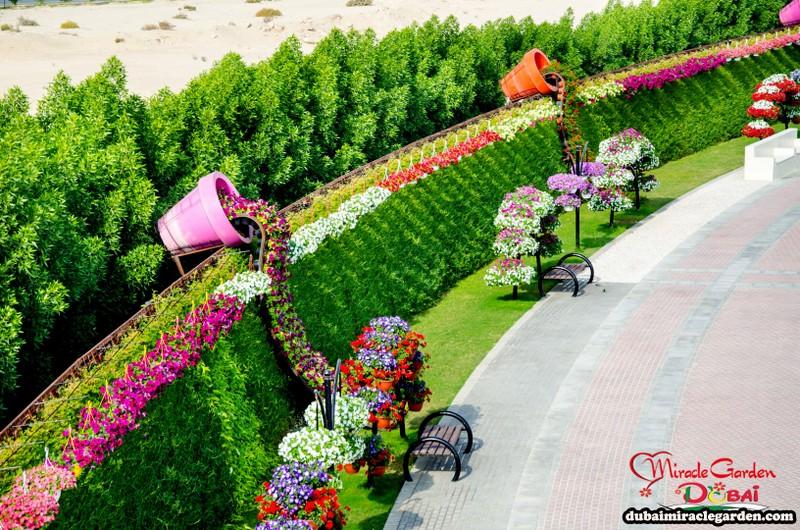 Jardin De Flores Más Grande Del Mundo Parques Tematicos
