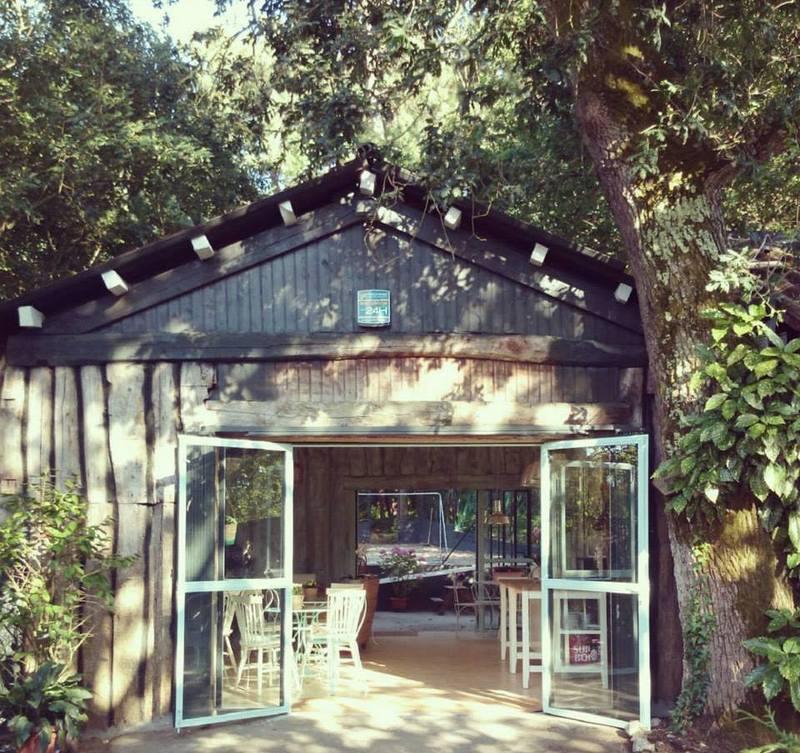 Cafeterías para niños en Vigo: Littleland-13065-joanasaldon