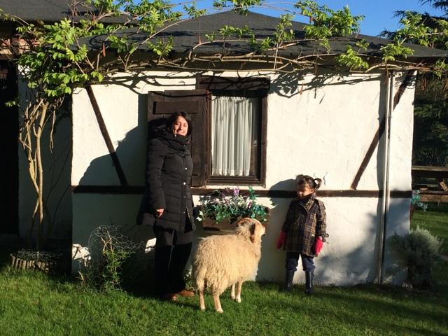 Escapada en familia a Cantabria: Armonia Animal-14194-joanasaldon