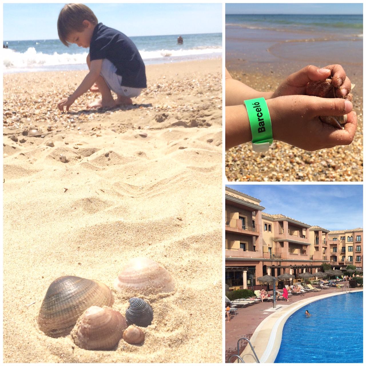 puntaumbria.playa.conchas