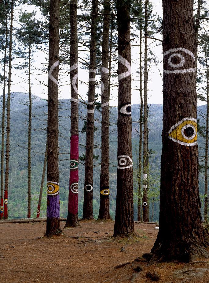 Planes en Bizkaia: Bosque de Oma con niños-16148-joanasaldon