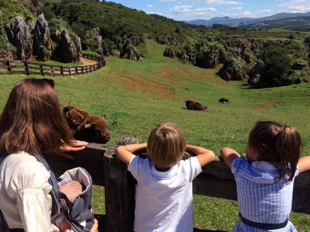 Cantabria con niños: Cabárceno-15948-joanasaldon
