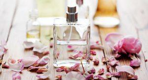 Los perfumes más frescos para este verano