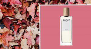 Estos son los perfumes a los que querrás oler este otoño