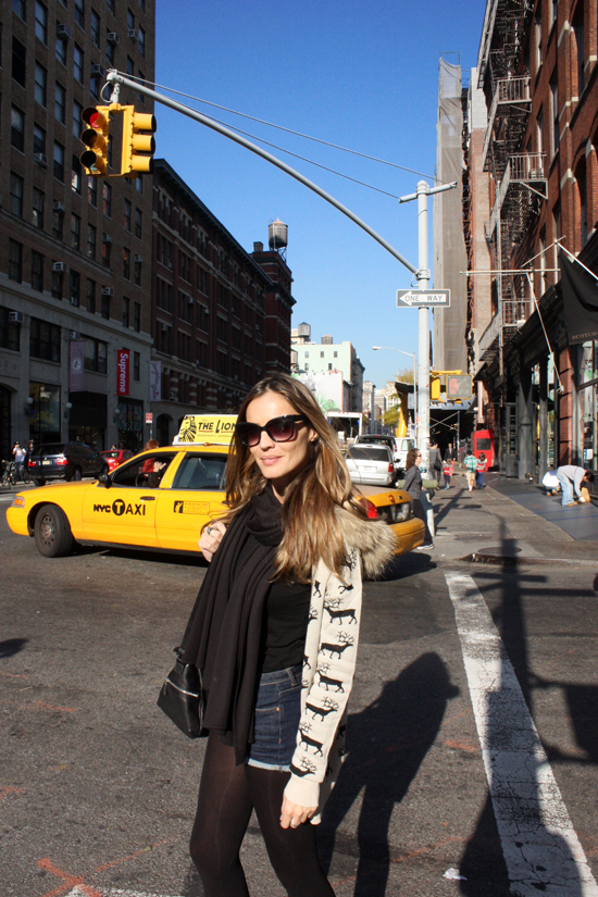 NYC – lady addict
