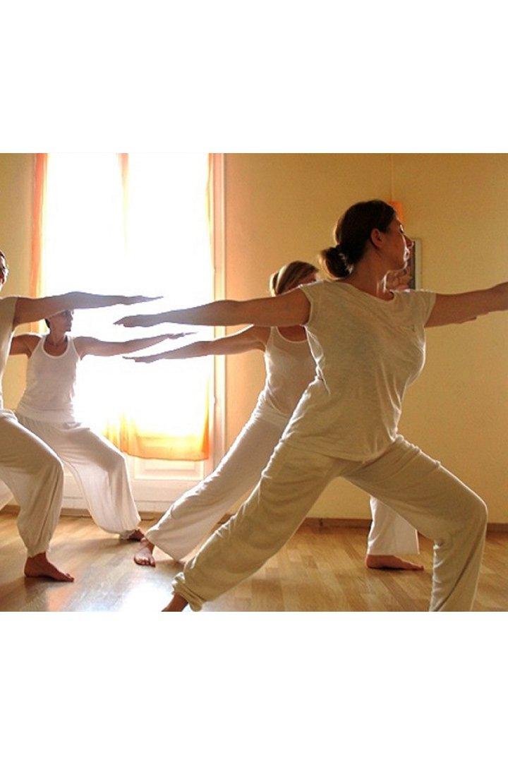 Centros de yoga en España: Yoga Shiva Shakti