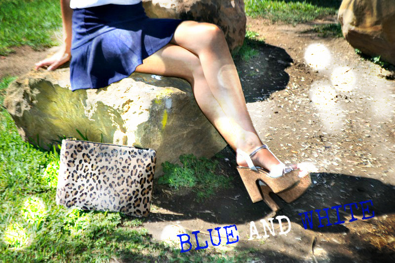 blue and white-47079-